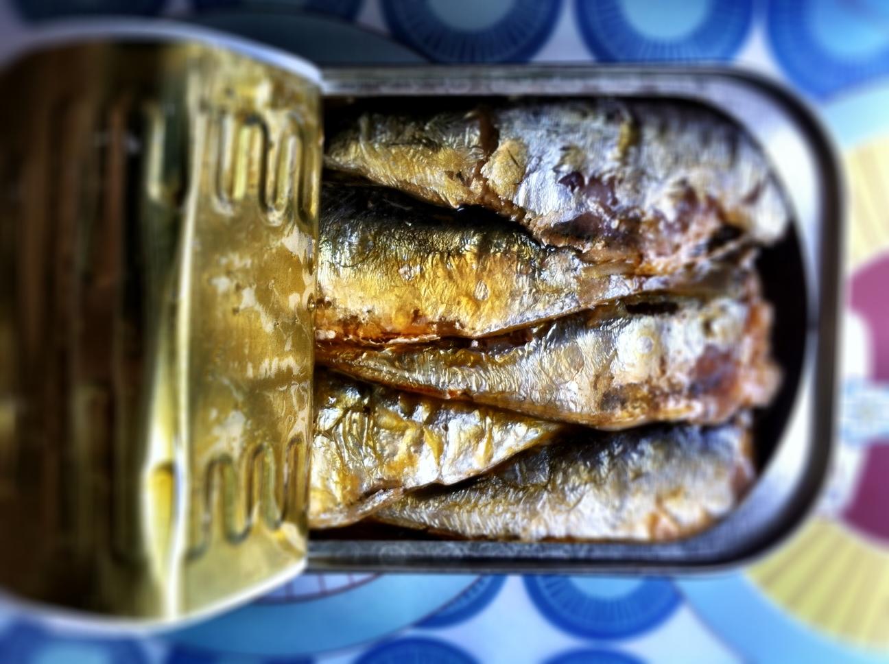 des lasagnes individuelles et des sardines en bo te. Black Bedroom Furniture Sets. Home Design Ideas