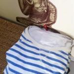 Voilà la marinière que je porterai demain (pour que vous puissiez me reconnaître, c'est très important)