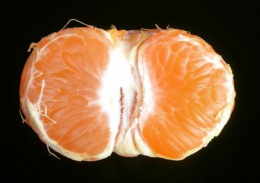 mandarine vasselot Rennes