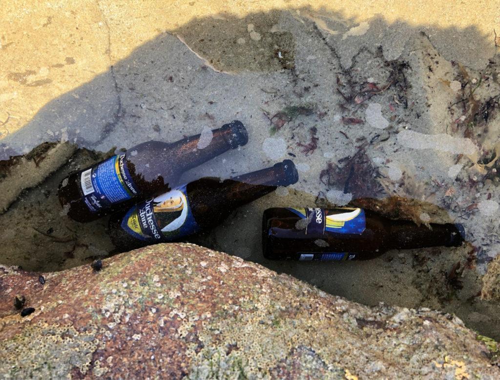 Rafraîchir des bières dans l'océan